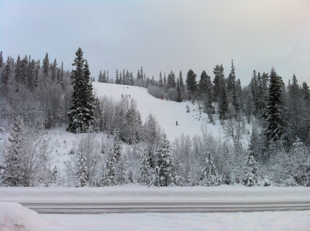 Slalombacke Vemdalsskalet