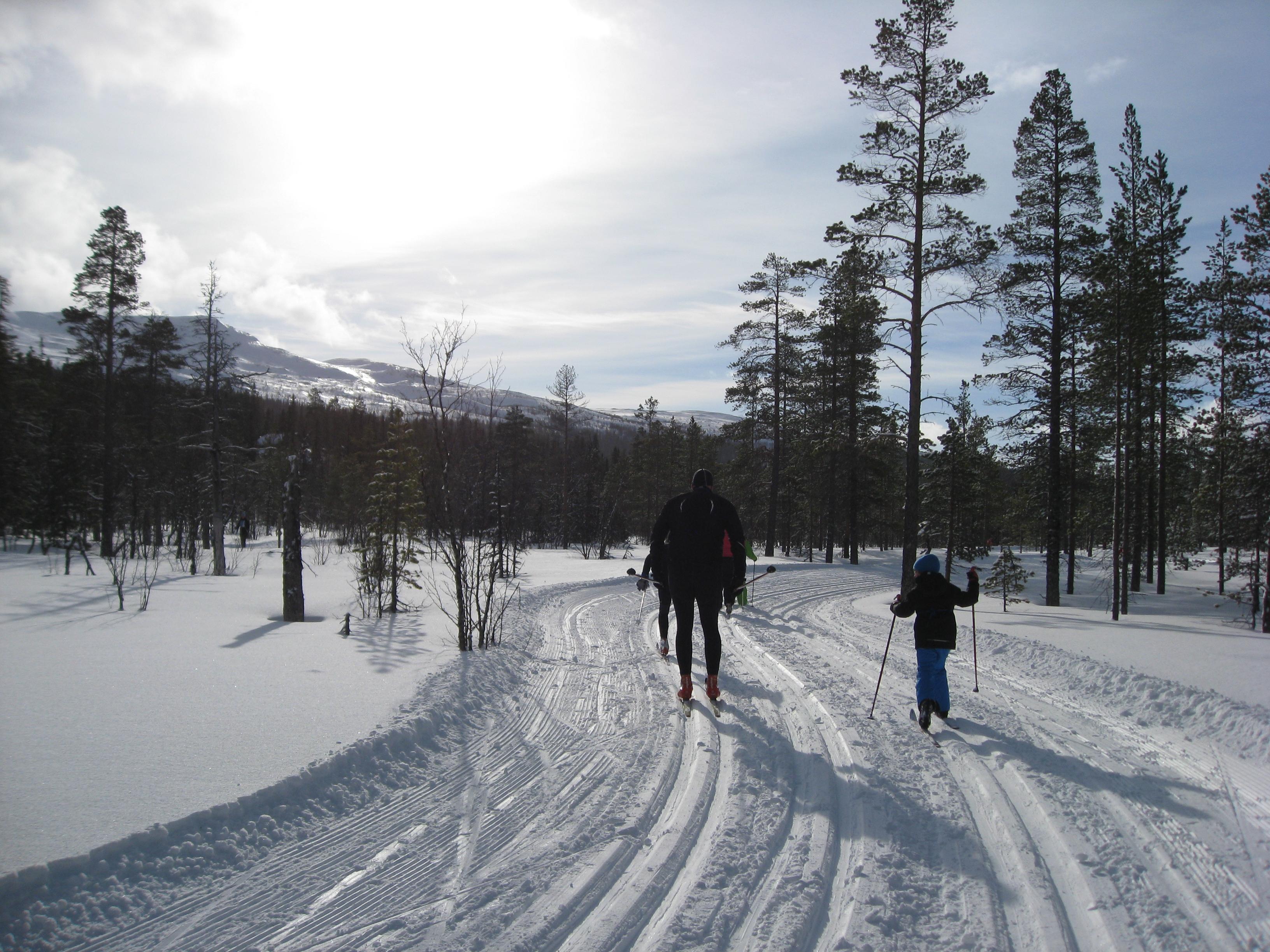 Dalsjöloppet Bydalen